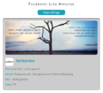 Facebook Like Check Tool - Auswertung 1